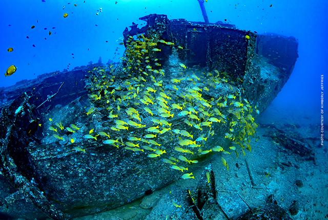 夏威夷欧胡岛亚特兰蒂斯潜水艇